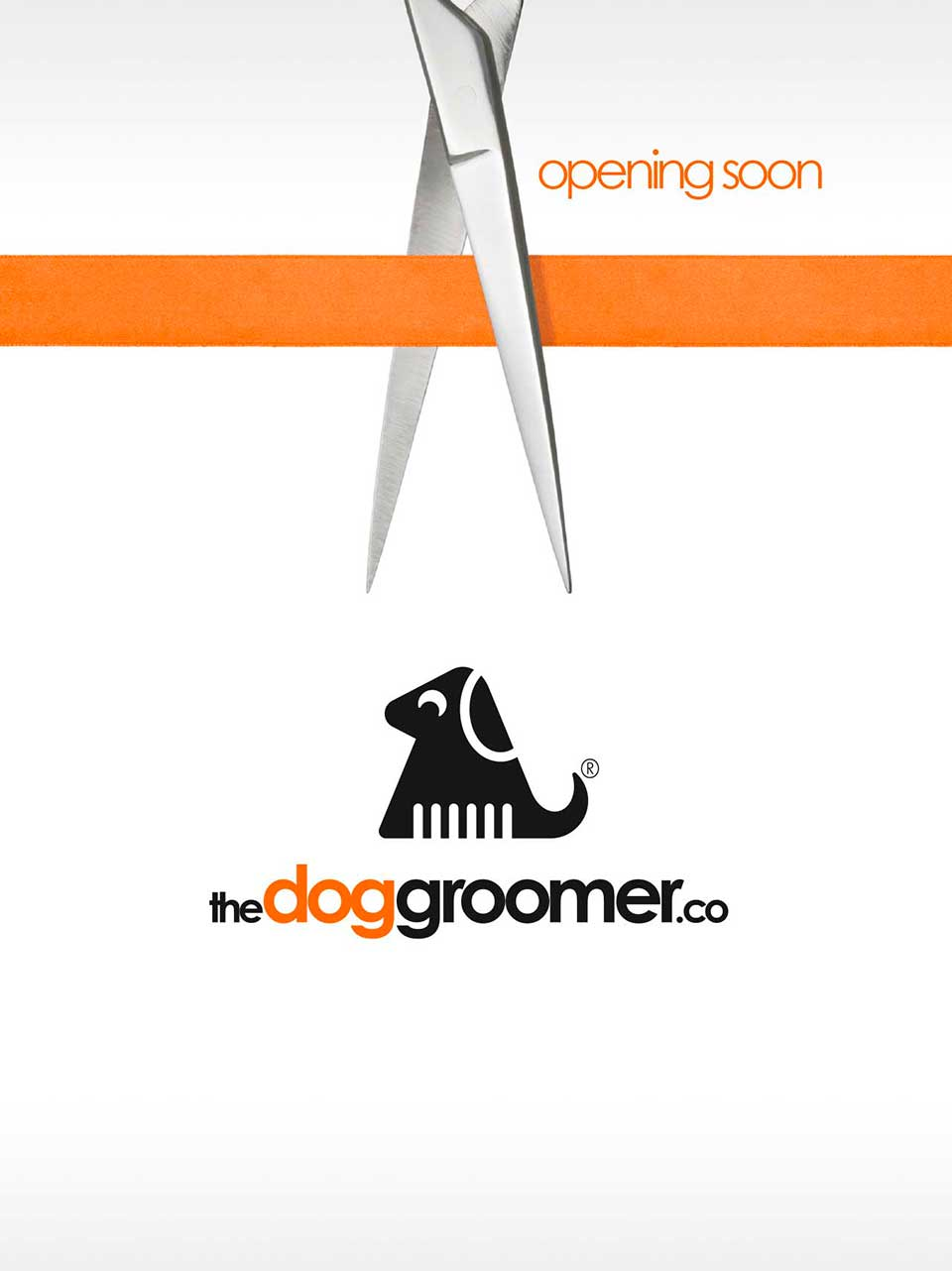 Opening for Business The Dog Groomer